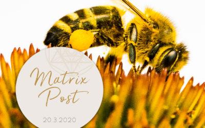 Matrix-Post 20.3. – Equinox
