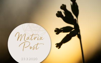Matrix-Post 23.3.