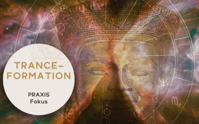 6. Praxis Fokus