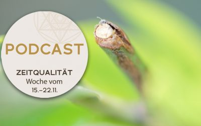 Podcast zur Zeitqualität